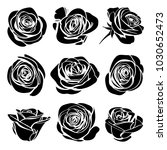 Stock vector roses hand drawn set black silhouettes rose flowers inflorescence with white lines isolated on 1030652473