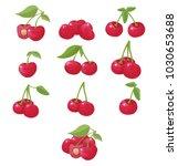 cherry  vector illustration | Shutterstock .eps vector #1030653688