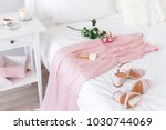 elegant long pink dress  heeled ... | Shutterstock . vector #1030744069
