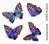 Stock photo a collection of illustrations of watercolor butterflies with a black outline isolated image of an 1030751614