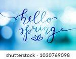 hello spring  vector lettering... | Shutterstock .eps vector #1030769098