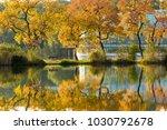 zhongshan botanical garden | Shutterstock . vector #1030792678