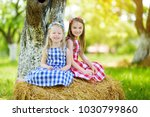 two little sisters sitting on a ... | Shutterstock . vector #1030799860