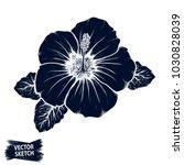 hibiscus flower sketch.... | Shutterstock .eps vector #1030828039