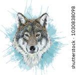 realistic vector wolf  ...   Shutterstock .eps vector #1030838098