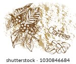 hand drawn berries  leaves ... | Shutterstock .eps vector #1030846684