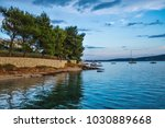 green pine on the seashore at... | Shutterstock . vector #1030889668