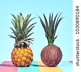 pineapple and coconut  two... | Shutterstock . vector #1030890184