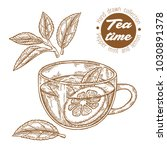hand drawn cup of tea. herbal... | Shutterstock .eps vector #1030891378
