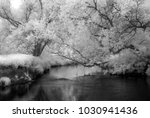 ner river on in the central... | Shutterstock . vector #1030941436