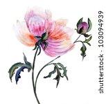 beautiful peony flower ... | Shutterstock . vector #103094939