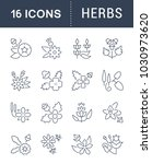 set of vector line icons  sign... | Shutterstock .eps vector #1030973620