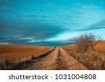landscape of a dirt road and... | Shutterstock . vector #1031004808