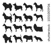 collection of dogs black... | Shutterstock . vector #1031005936