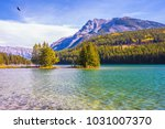 the morning sun warms the lake... | Shutterstock . vector #1031007370