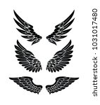wings collection set | Shutterstock .eps vector #1031017480