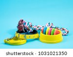 Stock photo bowl collar with toy rope and bite rope for blue background product image for pet supplies 1031021350