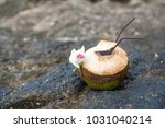 coconut cocktail with drinking... | Shutterstock . vector #1031040214
