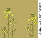 bright  sunny flowering... | Shutterstock .eps vector #1031048029