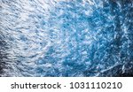 the cotton texture and... | Shutterstock . vector #1031110210