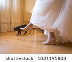 the bride is trying on shoes ... | Shutterstock . vector #1031195803