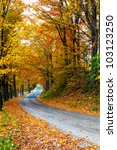 Colorful Autumn Trees With...