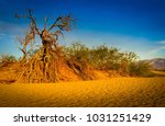 death valley national park ... | Shutterstock . vector #1031251429