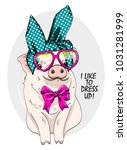 vector pig with glasses and bow.... | Shutterstock .eps vector #1031281999