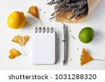 notebook  pen  ginkgo leaves ... | Shutterstock . vector #1031288320