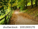 A Walkway Covered In Autumn...