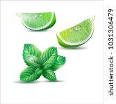 vector illustration of mint ... | Shutterstock .eps vector #1031306479