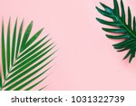 tropical palm leaf on pink... | Shutterstock . vector #1031322739