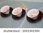 bridal image  splendid and... | Shutterstock . vector #1031341504