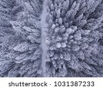 overhead view of snow covered... | Shutterstock . vector #1031387233