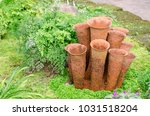 terracotta pottery with green... | Shutterstock . vector #1031518204