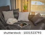 cozy family room with brown... | Shutterstock . vector #1031523793