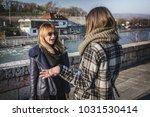 two beautiful two beautiful... | Shutterstock . vector #1031530414
