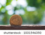 gold coin on the table in...   Shutterstock . vector #1031546350