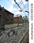 Small photo of barbed wire fence in Nazi concentration lagger