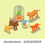 Stock vector pet shop isometric background with parrot in cage goldfish in aquarium cat and dogs of different 1031603569