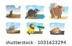 cute animals. vector set. | Shutterstock .eps vector #1031623294