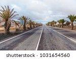 tropical fuerteventura road...   Shutterstock . vector #1031654560