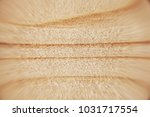light close up texture of wood... | Shutterstock . vector #1031717554