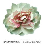 vintage watercolor white pink... | Shutterstock . vector #1031718700