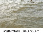close up texture of water | Shutterstock . vector #1031728174