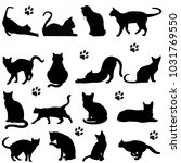 Stock photo silhouette cats in black for illustration 1031769550