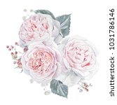 watercolor hand drawn pink... | Shutterstock . vector #1031786146