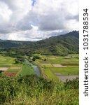 hawaiian landscapes  kauai ...   Shutterstock . vector #1031788534