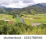 hawaiian landscapes  kauai ...   Shutterstock . vector #1031788540