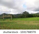 hawaiian landscapes  kauai ...   Shutterstock . vector #1031788570